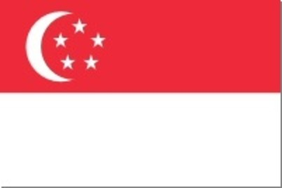 Singaporean Flag Small